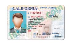 California Driver License Front With Border X Fabulous California Drivers License Template Ca Drivers License, Drivers License California, Driver License Online, Driver's License, Birth Certificate Template, Passport Pictures, Real Id, Id Card Template