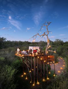 Lion Sands Chalkley Treehouse in South Africa. Unusual hotels around the world at OnePennyTourist.com