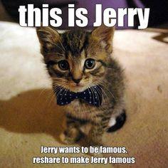 I WILL MAKE JEREY FAMOUS!!!!!!!!!
