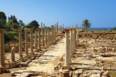 The new city of Tyre
