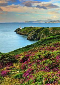 Howth Coastal Walk, near Dublin Photo Leslie Hanthorne Dublin City, Spring Break, Lighthouse, Coastal, Places, Water, Travel, Enchanted, Outdoor