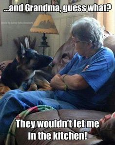 21 Funny Animal Pics for Your Monday - Funny Animal Quotes - - We love cute pictures of cats dogs horses pigs cows lions and tigers and bears OH MY! The post 21 Funny Animal Pics for Your Monday appeared first on Gag Dad. Humor Animal, Funny Animal Memes, Dog Memes, Funny Animal Pictures, Cute Funny Animals, Funny Cute, Dog Pictures, Funny Dogs, Funny Memes