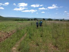 Walking to a homestead. There is no driveway or road to take you in. Some homesteads you must walk in.