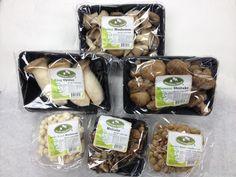 Mushroom House Fresh Exotic Mushroom Retail Family