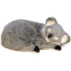 Perfect Petzzz Koala  - Imex