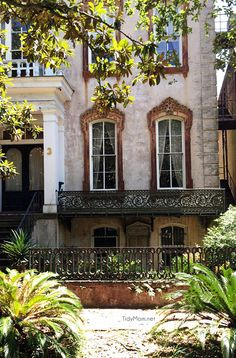 Things to do and sights to see in Savannah, GA. From a trolley tour to points around Savannah this is must read if you're planning a visit to Savannah. Savannah Georgia Homes, Savannah Chat, Savannah Tours, The Places Youll Go, Great Places, Places To Go, Beautiful Buildings, Beautiful Places, Savannah Historic District