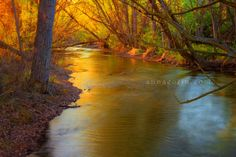 boise idaho river images - Yahoo Image Search Results
