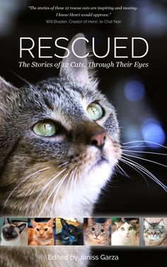 """Portion of all April '15 sales goes to Anjellicle Cats Rescue.  From """"I've been published!"""" on Nerissa's Life.  http://www.nerissaslife.com/2015/04/ive-been-published.html"""