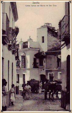 Tipica calle del barrio de Santa Cruz.