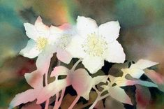 How to Mix Dark Colours and Vibrant Greens for Painting Winter Flowers in Watercolour | Features | Painters Online
