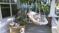 Porch swing made from papasan chair.