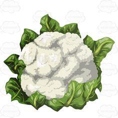 cauliflower clipart - Google Search