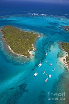 ✯ Tobago Cays - Grenadines