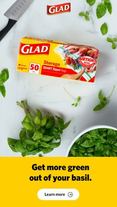 Storing fresh basil is easy with GLAD& food storage tips. Learn how to store fresh basil and how to freeze basil to keep it fresh longer. Storing Fresh Basil, Fresh Herbs, Canned Salsa Recipes, Salad Recipes, Crockpot Glazed Carrots, Enchilada Ingredients, Frosty Recipe, How To Make Pesto, Edible Food