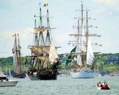 Parade of Sail, Newport, Rhode Island