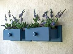 Veja ideias para reaproveitar gavetas de armários antigos na decoração | Economize