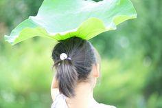 umbrella | Flickr - Photo Sharing!