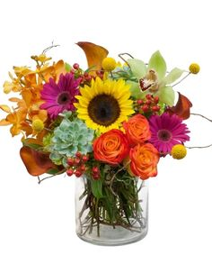 Festive @freytagsflorist is full of fall flowers like sunflowers and vivid orchids, bronze calla lilies, circus roses. yellow poms, gerbera daisies and hens and chicks succulents