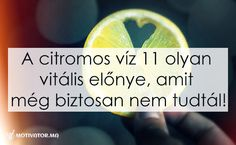 A citromos víz 11 olyan vitális előnye, amit eddig biztosan nem tudtál!