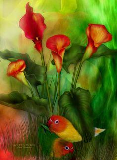 Love Among The Lilies ~ Carol Cavalaris