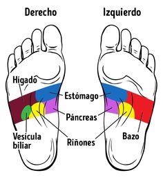 21 puntos para masajear los pies que mejoran tu salud – Soy Espiritual 21 points to massage the feet that improve your health – I am Spiritual Acupressure Points, Reflexology Massage, Foot Massage, Fitness Nutrition, Health And Nutrition, Massage Benefits, Health Promotion, Health Advice, Massage Therapy