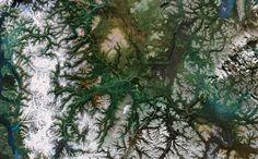 Tumblr - tsayta-canada-google-earth-fractals