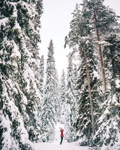 The Complete Lapland, Finland Travel Guide - Find Us Lost Finland Travel Destinations Honeymoon Backpack Backpacking Vacation Cool Places To Visit, Places To Travel, Travel Destinations, Finland Destinations, Winter Destinations, Travel Things, Vacation Travel, Travel Goals, Time Travel