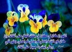 bouchra sara