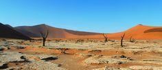 L'aurea magica di una natura senza filtri: la #Namibia della nostra viaggiatrice Raffaella Mongiello