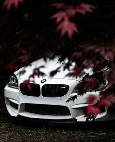 Just a small glimpse of the amazing. The BMW Coup Bmw M6 Coupe, Best Suv Cars, Best Luxury Cars, Audi Q 5, Audi Cars, Bmw X5, Carros Bmw, Bmw M Power, Bmw Wallpapers