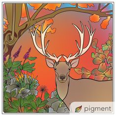 Its The Best Adult Coloring App For IPhone IPad And Android With Over 2200 Pages