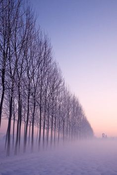 Something about fog.Fog by Historicando Fotografia via Beautiful World, Beautiful Places, Beautiful Pictures, Color Lavanda, Photo Voyage, Dame Nature, Winter Schnee, Nature Pictures, Belle Photo