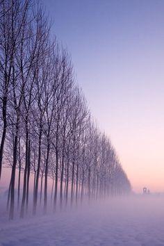 "tect0nic: "" Fog by Historicando Fotografia via 500px. """