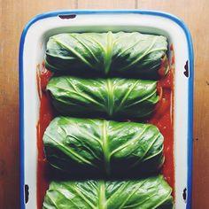Turkey, Quinoa & Cranberry-stuffed Cabbage Rolls via @feedfeed on https://thefeedfeed.com/farm-fresh/feedmedearly/turkey-quinoa-cranberry-stuffed-cabbage-rolls