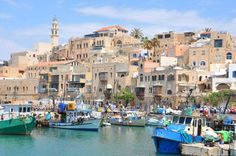 Jaffa: the Old Port, where Jonah sought to escape God's command that he go to Nineveh and preach to the ancestors of the Iraqi people