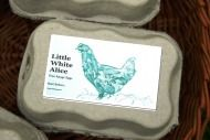 Self Catering Holiday Cottages in Cornwall - Little White Alice
