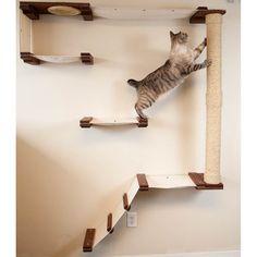 Cat Mod Climb Track - Unfinished/Black - Walmart.com - Walmart.com Furniture Scratches, Cat Furniture, Painted Furniture, Floating Cat Shelves, Cat Tree Designs, Cat Stairs, Cat Activity, Cat Playground, Cat Climbing