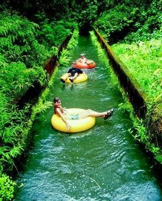 Canal tubing in Hawaii| See More Picz: