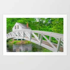 Bar Harbor Maine White Bridge Print Art Print