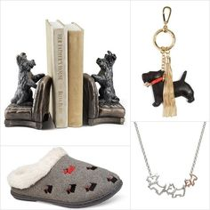 Image result for scottish terrier fashion
