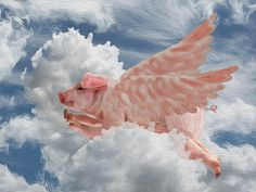 When Pigs Can Fly, Flying Pig by Jack Zulli