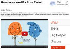 Siamo tutti chimici nati , col naso / How do we smell?