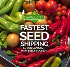 Our small seed company is working hard to provide the fastest seed shipping in the West! While other larger seed companies have been backing up with the huge seed demand increase, we've been able to keep on top of orders and ship within 1-3 days of ordering so you'll get your seeds in record time!