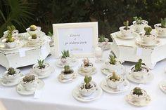 Bianco Antico:BA Wedding: Monica e Andrea, succulente e delicatezza per un romantico matrimonio in vivaio