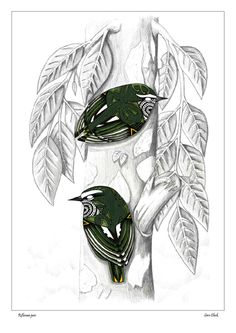 Tititipounamu pair (rifleman), by Sam Clark
