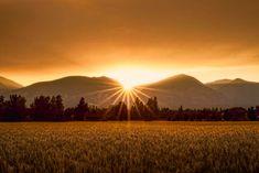 Golden sunset over a Bitterroot Montana pasture | Photos of the ...