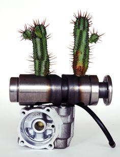ikebana201509:Euphorubia enopla+a machine part(ユーフォルビア・エノプラ+機械部品)ー2