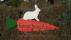 Kaninchenschau #Namborn 2016 #im #Landkreis #St. #Wendel  #Saarland #Wir besuchen #die Kaninchenschau #des Kaninchenuchtvereins #SR 143 #Namborn #im #St. #Wendeler #Land #im #Oktober 2016. #St. #Wendel #Saarland http://saar.city/?p=36285