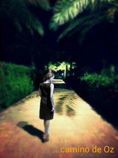 Caminando hacia Oz