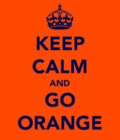 Enough said....     Grandin Road Color Crush on Burnt Orange